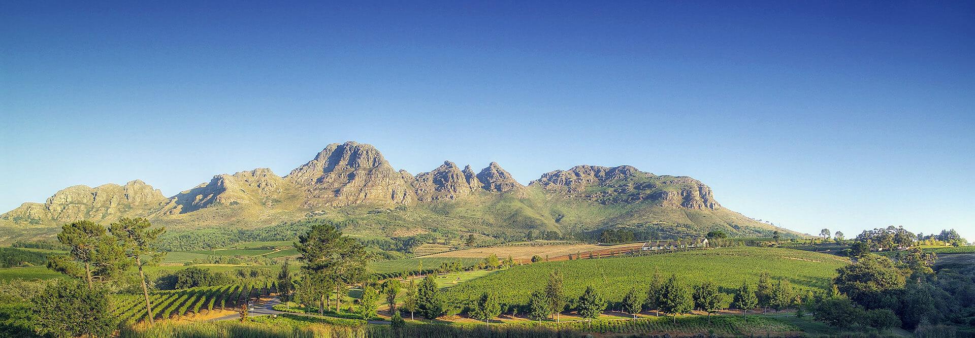 Stellenbosch Wine Routes Helderberg Ernie Els Wines - Mid Banner