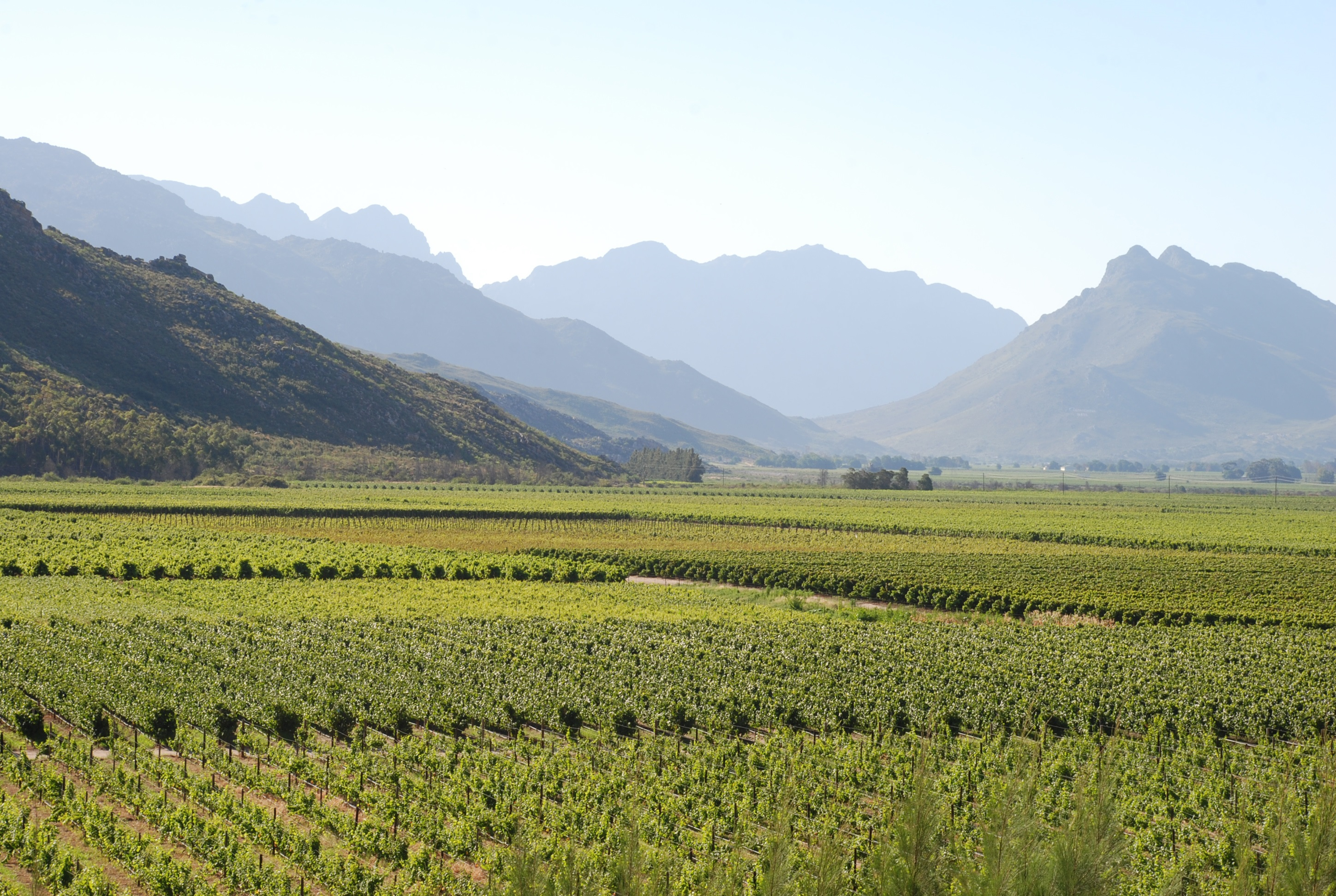 Breedekloof Valley