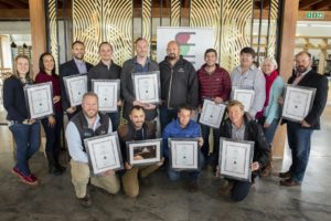 Top performers in Winemag Pinot Noir Report